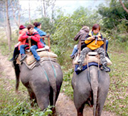 Chitwan Jungle Safari Image